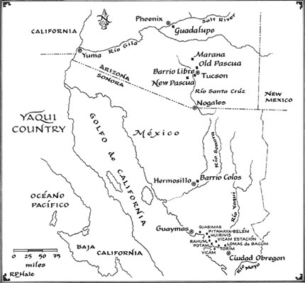 I Wish To Begin Discursion About Yavapai These Indians In The
